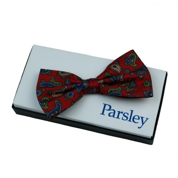 Nœud papillon Parsley rouge à motifs